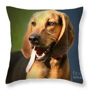 Loveable Hound Throw Pillow
