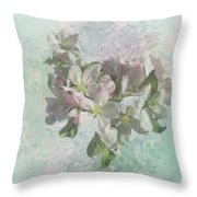 Lovely Apple Blossoms Throw Pillow