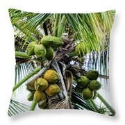 Lovely Bunch Of Coconuts Throw Pillow