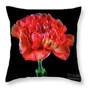 Lovely Carnation 12718-1 Throw Pillow