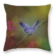 Lovely Color Throw Pillow