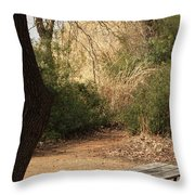 Lovely Day For A Picnic Throw Pillow