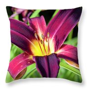 Lovely Day Lily Throw Pillow