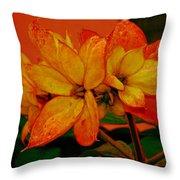 Lovely Flowers1 Throw Pillow
