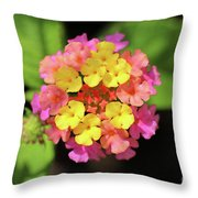 Lovely Lantana Throw Pillow