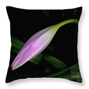Lovely Lilies Sleeping Bloom Throw Pillow