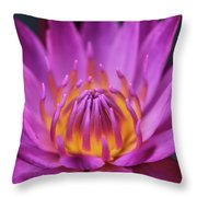 Lovely Lily II Throw Pillow