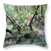 Lovely Lithia Springs Throw Pillow