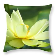 Lovely Lotus Throw Pillow