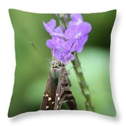 Lovely Moth On Dainty Flower Throw Pillow