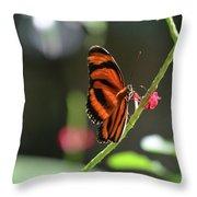 Lovely Orange Oak Tiger In The Spring Throw Pillow