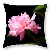 Lovely Pink Camelia Throw Pillow