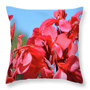 Lovely Pink Flowers  Throw Pillow