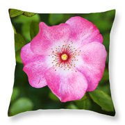 Lovely Pink Rose Throw Pillow