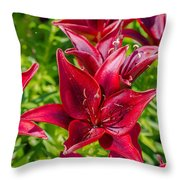 Lovely Red Lilies Throw Pillow