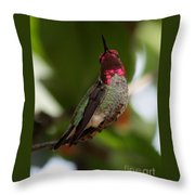 Lovely Ruby Red Throw Pillow
