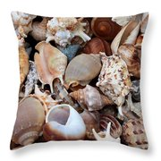 Lovely Seashells Throw Pillow