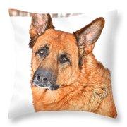 Lovely Shepherd Throw Pillow