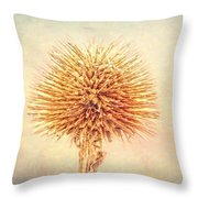 Lovely Spikes Throw Pillow