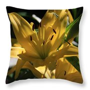 Lover's Lilly II Throw Pillow