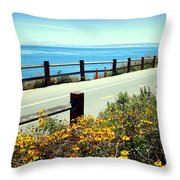 Lovers Point Walkway Throw Pillow