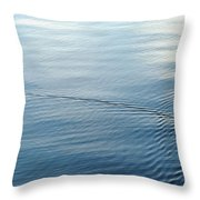 Lover's Spat Throw Pillow