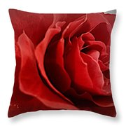 Love's Bloom Throw Pillow
