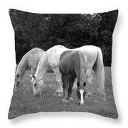 Loving Life Throw Pillow
