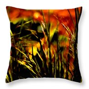 Loving The Warmth Throw Pillow