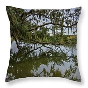 Low Country Days Throw Pillow