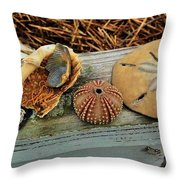 Low-country Still-life Throw Pillow