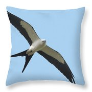 Low Flying Kite Throw Pillow