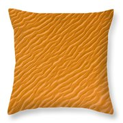 Low Rippling Dunes In The Northern Throw Pillow