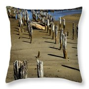 Low Tide #2 Throw Pillow