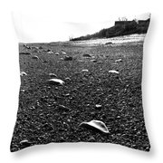 Low Tide At Linwood's House 26 Throw Pillow