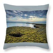 Low Tide At Swami's Throw Pillow
