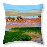 Low Tide Beauty Throw Pillow