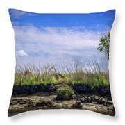 Low Tide II Throw Pillow