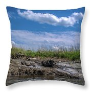 Low Tide IIi Throw Pillow