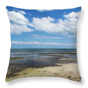 Low Tide In Paradise - Key West Throw Pillow