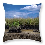 Low Tide Iv Throw Pillow