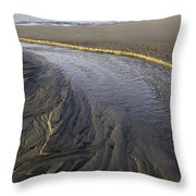 Low Tide Morning Throw Pillow