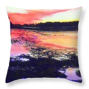 Low Tide On The Penobscot River Throw Pillow