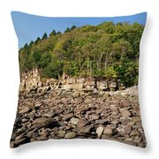 Low Tide Panorama Throw Pillow