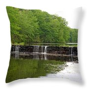 Low Water Throw Pillow
