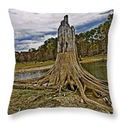 Low Water Throw Pillow by Scott Pellegrin