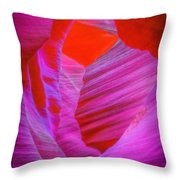 Lower Canyon 39 Throw Pillow