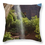 Lower Emerald Pool Falls In Zion Throw Pillow