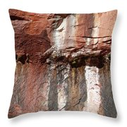 Lower Emerald Pool Rock-zion National Park Throw Pillow