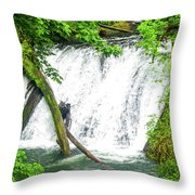 Lower Falls 4 Throw Pillow